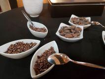 Kakobohnen und Kakaonips